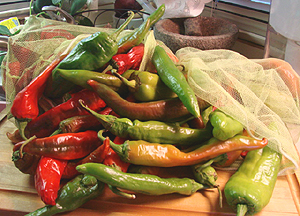 Authentic Southwest chiles, chile sauces and salsas